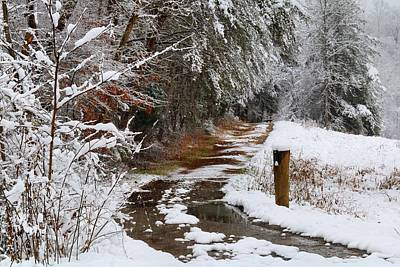 Photograph - Snowy Driveway by Kathryn Meyer