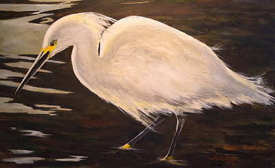 Painting - Snowy Egret by Alan Lakin