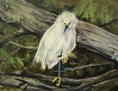 Painting - Snowy Egret by Gloria Smith