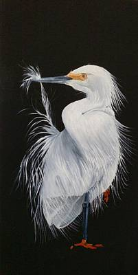 Painting - Snowy Egret Grooming by Joan Mansson