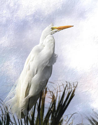 Digital Art - Snowy Egret by Michele Loftus