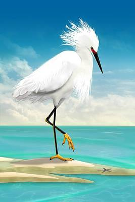 Digital Art - Snowy Egret On Beach  by John Wills