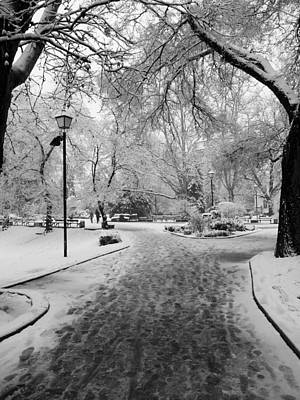 Snowy Entrance To The Park Art Print by Rae Tucker