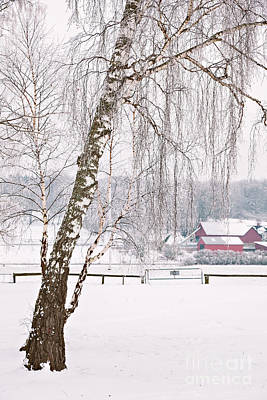 Photograph - Snowy Farm Landscape by Sophie McAulay