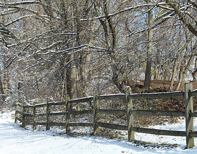 Photograph - Winter Fence by Melinda Blackman