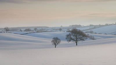 Trees In Snow Photograph - Fields Of White by Chris Dale