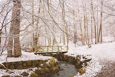 Photograph - Snowy Foot Bridge by Sophie McAulay