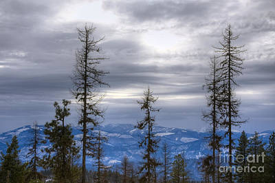 Photograph - Snowy Forecast by Idaho Scenic Images Linda Lantzy