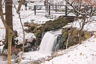 Photograph - Snowy Forest Waterfall by Sophie McAulay