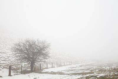 Photograph - Snowy Frendal Dale by Gavin Dronfield