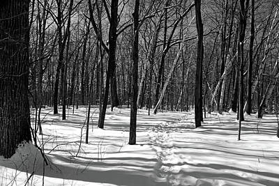 Photograph - Snowy Hiking Trail 021218 Bw by Mary Bedy