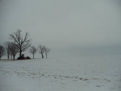 Snowy Illinois Field Art Print by David Junod