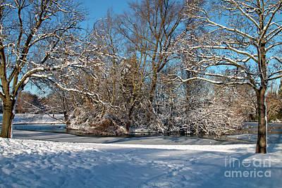 Photograph - Snowy Island by Baggieoldboy