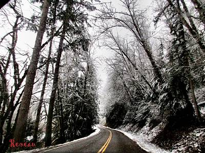 Photograph - Snowy Kapowsin Wa Road by Sadie Reneau