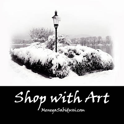 Photograph - Snowy Lamp Post - Shop With Art At Menegasabidussi.com by Menega Sabidussi
