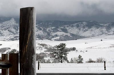 Photograph - Snowy Landscape by Anjanette Douglas