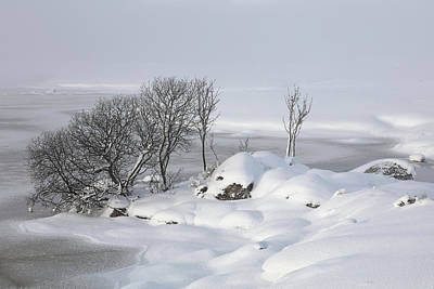 Photograph - Snowy Landscape by Grant Glendinning