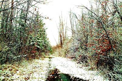 Photograph - Snowy Lane by Marianne Dow