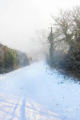 Photograph - Snowy Lane by Terri Waters