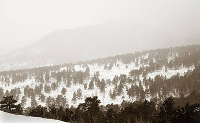Photograph - Snowy Layers by Marilyn Hunt