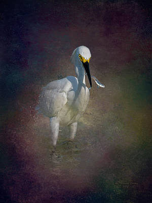 Egret Wall Art - Photograph - Snowy Lunch by Marvin Spates