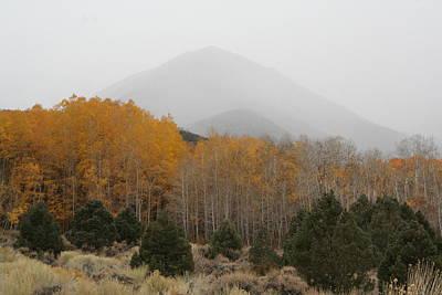 Dyer Photograph - Snowy Mist by Brett H Runion