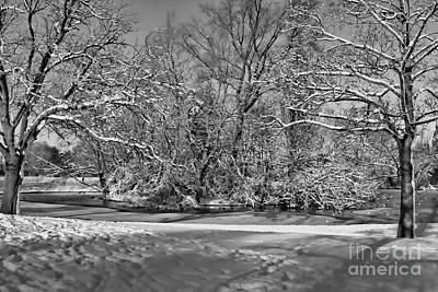 Photograph - Snowy Mono Island by Baggieoldboy