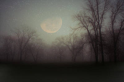Photograph - Moonlit Dreams by Inspired Arts