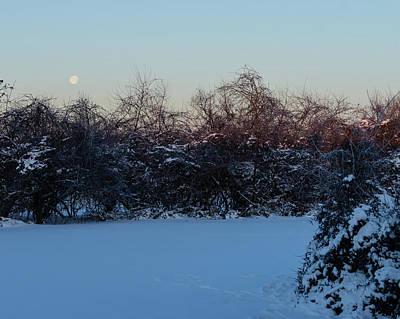 Photograph - Snowy Moonset by Steve Atkinson