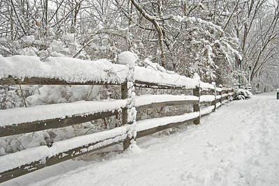Snowy Morning Art Print by Michael Peychich
