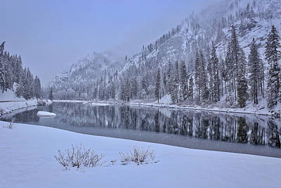 Photograph - Snowy Morning With Reflections by Lynn Hopwood
