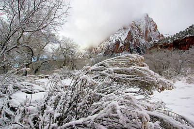 Photograph - Snowy Mountains In Zion by Daniel Woodrum