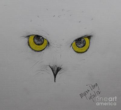 Snowy White Owl Drawing - Snowy by Myron Dong