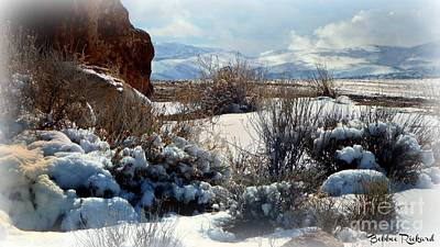 Photograph - Snowy Nevada Day by Bobbee Rickard