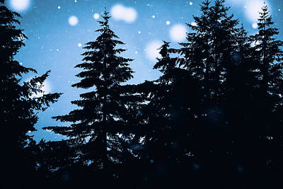 Snowy Night Photograph - Snowy Night by Debi Bishop