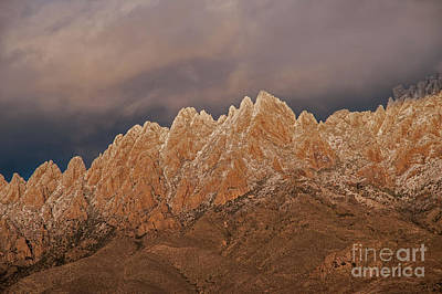 Photograph - Snowy Organ Mountains by Steve Whalen