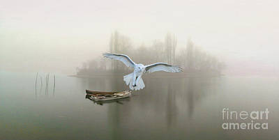 Snowy Owls Wall Art - Photograph - Snowy Owl At Dawn by Laura D Young