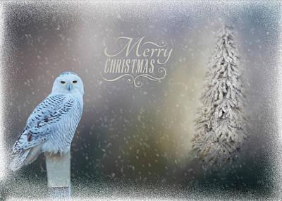 Photograph - Snowy Owl Christmas Greeting by Cathy Kovarik