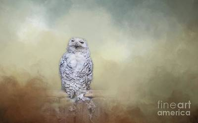Photograph - Snowy Owl by Eva Lechner