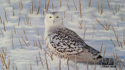 Painting - Snowy Owl by Lorraine Bradford