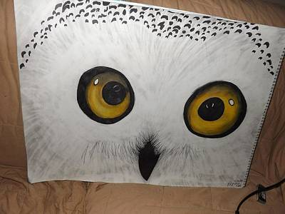 Snowy White Owl Drawing - Snowy Owl Memories by Zo Dale