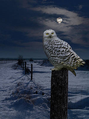 Digital Art - Snowy Owl On A Winter Night by IM Spadecaller