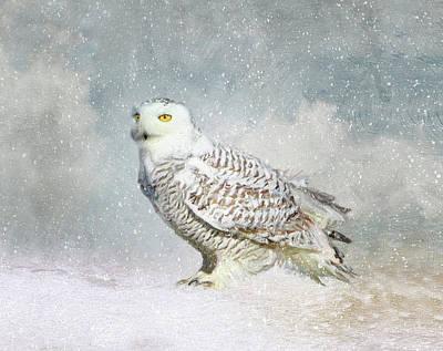 Photograph - Snowy Owl Totebag by Karen Lynch