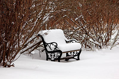 Photograph - Snowy Park Bench by Debbie Oppermann
