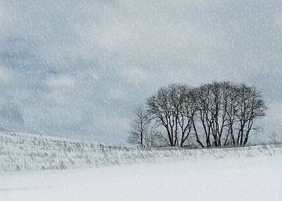 Photograph - Snowy Pasture by JAMART Photography