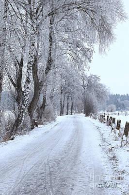 Photograph - Snowy Path by Jutta Maria Pusl