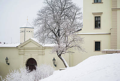 Photograph - Snowy Petrov Street In Brno by Jenny Rainbow