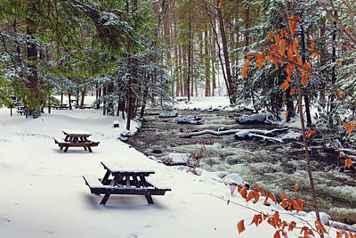 Photograph - Snowy Picnic by April Reppucci