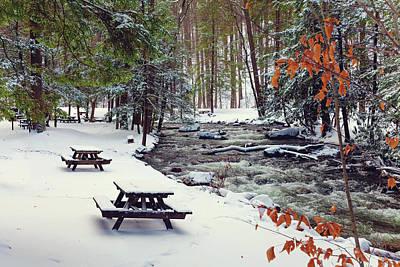 Photograph - Snowy Picnic by April Reppucci