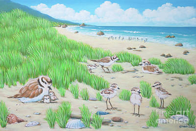 Painting - Snowy Plover by Elisabeth Sullivan
